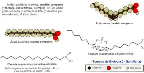 cadenas hidrocarbonadas clasificacion veronicabcdc entrada 5 trascender un concepto a un tema
