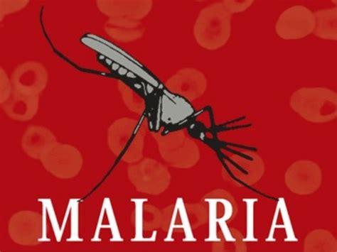 L Malaria la malaria
