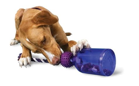 busy toys for dogs best indestructible toys for aggressive chewers the guide