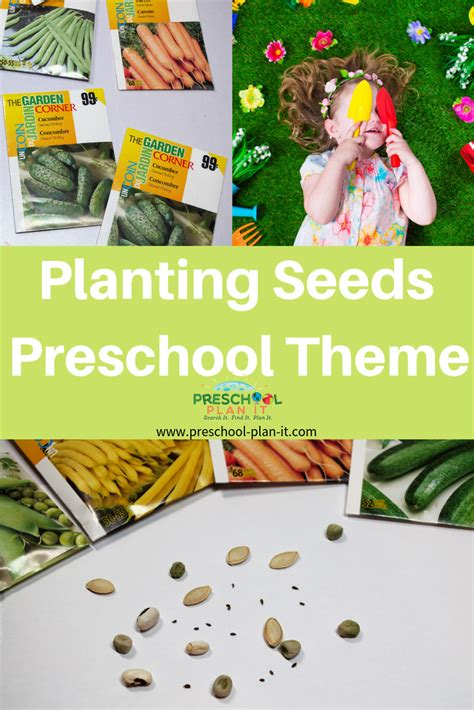 planting seeds theme  preschool