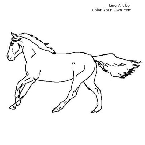 coloring pictures of horses running running lineart
