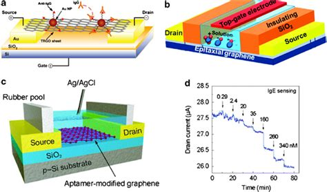 fet transistor graphene schematic of a reduced go fet anti immunoglobulin g igg was anchored