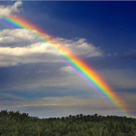 imagenes de un arco iris 191 cu 225 ntos colores hay realmente en un arco 237 ris