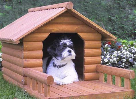 luxury house all about dogs breeds picture