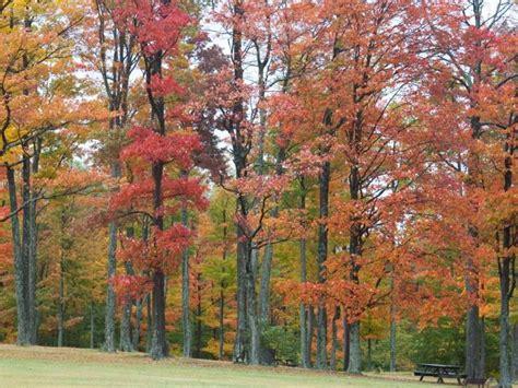 fall colors 2017 western pennsylvania fall foliage 2017 expect