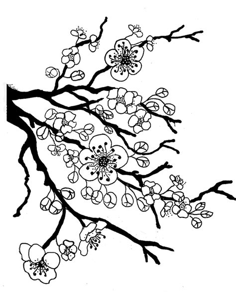 spring blossom colouring pages