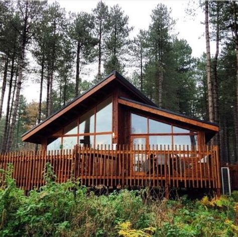 silver birch cabin 83 picture of forest holidays