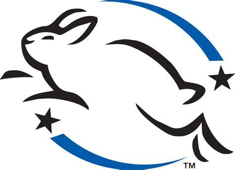 prodotti testati su animali elenco dei prodotti testati sugli animali e di quelli