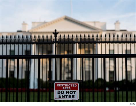 White House Fence by White House Repeat Fence Jumper Marci Wahl Says Others