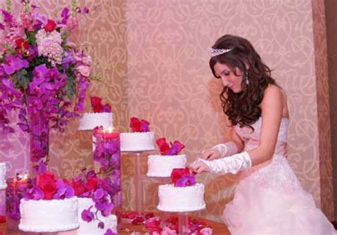 quinceanera themes for november quinceanera dresses in houston november 2011