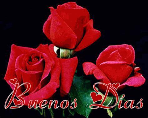 imagenes con frases de buenos dias con rosas buenos d 237 as a ti gifs tres rosas rojas