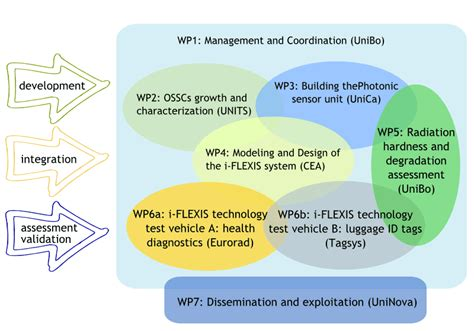 iflexis project working plan