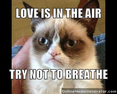 Grumpy Cat Meme Valentines Day - grumpy cat is my soul mate