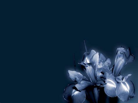 Modern Blue by Modern Blue Wallpaper Wallpaper