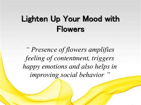 lighten up definition of lighten up by the free dictionary lighten up your mood with flowers
