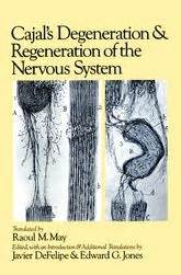 genius and degeneration a psychological study classic reprint books cajal s degeneration and regeneration of the nervous