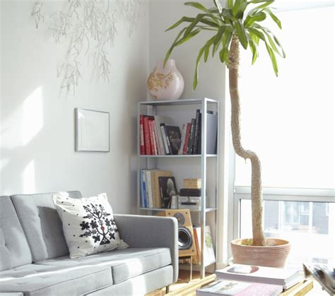 feng shui plants in living room feng shui and your living room sofa