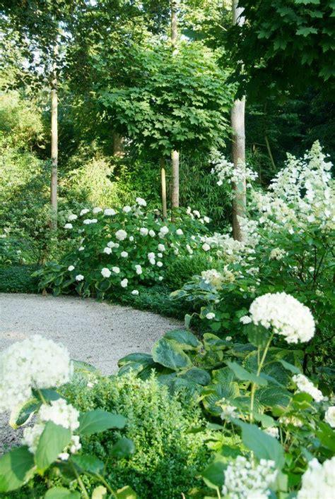 Pin By Viki Atkinson On Garden Pinterest Gardens White Flower Gardens