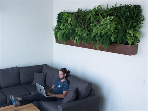 self watering vertical garden models bring greenery indoors