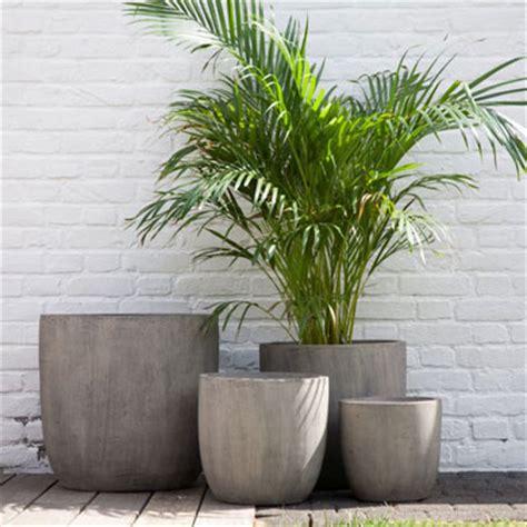 Gros Pot De Fleur Ext Rieur by Plantes En Pot Exterieur Surprenant Plante