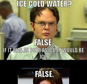 False Meme - pics for gt false dwight meme