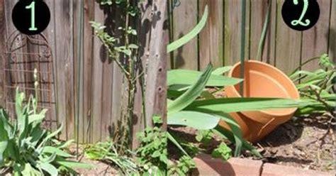 Terracotta Pot Vertical Garden Create A Vertical Garden With Terracotta Pots