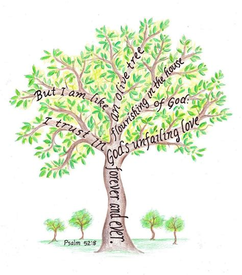 tree pictures with scripture verses olive tree drawing
