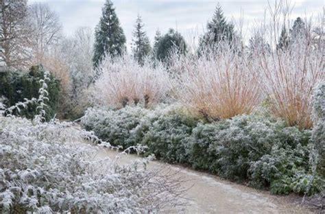 anglesey winter garden winter garden anglesey winter gardens