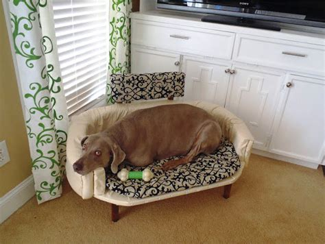 diy dog sofa diy dog couch petdiys com