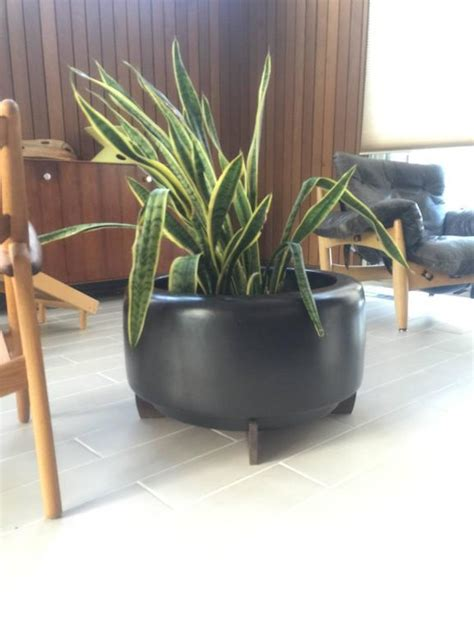 Architectural Planter by Large Architectural Pottery Planter All Original By Rex