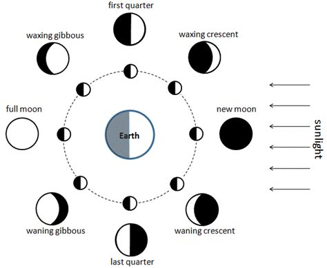 lunar phases diagram the sun and the earthmoon system lesson 0056 tqa explorer
