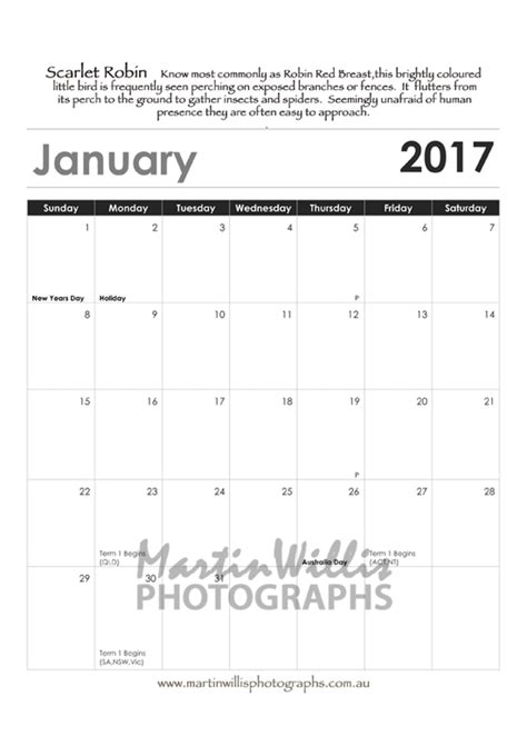 Calendar Buy Australia Buy Australian Birds Parrots Calendars Martin
