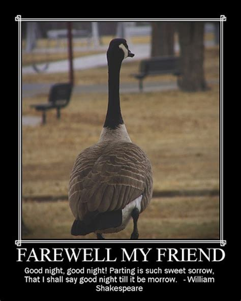 Funny Goodbye Quotes. QuotesGram
