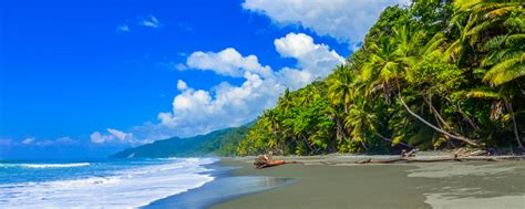 cheap flights from miami to costa rica for 204 service airline