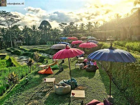 ubud property land villas  sale rent  ubud bali