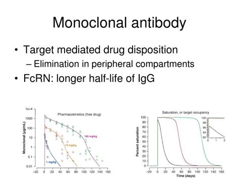 frontiers antibody targeting of steady ppt pharmacokinetics pharmacodynamics powerpoint