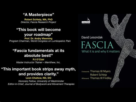 your fascia books david lesondak talks about fascia fascial fitness