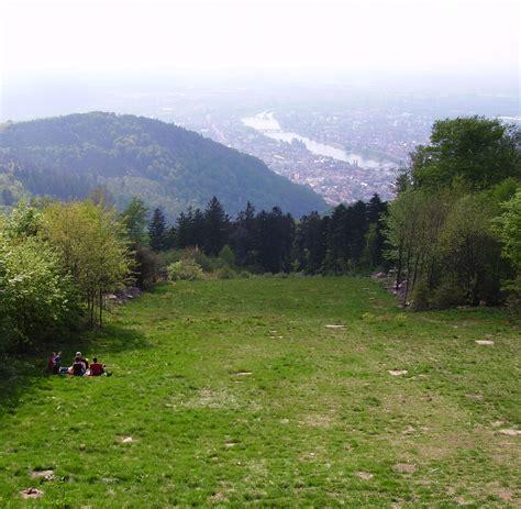 königsstuhl file wiese koenigstuhl heidelberg jpg wikimedia commons