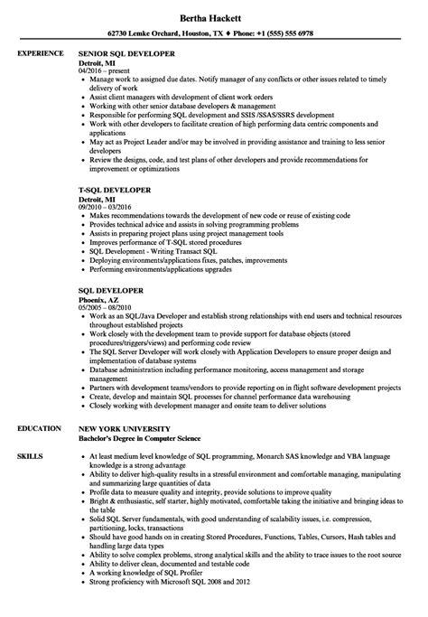 Sql Developer Resume by Sql Developer Resume Sles Velvet