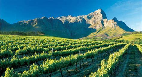 imagenes sudafrica vinos de sud 225 frica