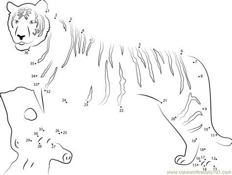 printable tiger dot to dot panthera tigris dot to dot printable worksheet connect