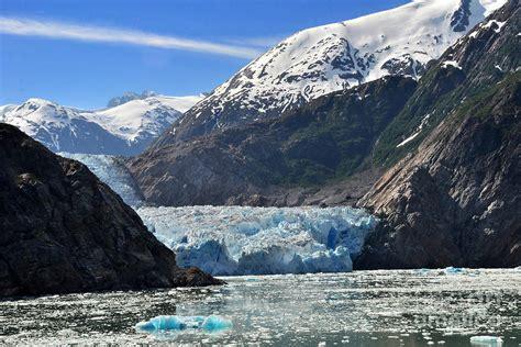 fjord glacier tracy arm fjord glacier photograph by jack moskovita