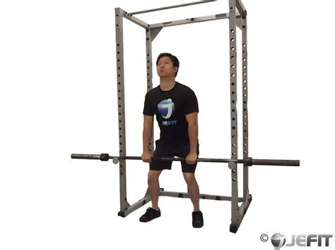 Rack Pulls Bodybuilding by Barbell Rack Pulls Exercise Database Jefit Best