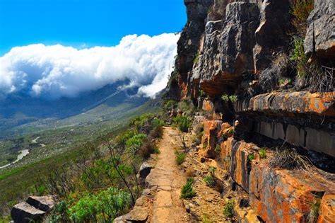 table mountain national park 9 secrets of table mountain national park south africa