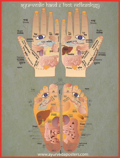 Reflexology And Detoxing by Ayurveda Reflexology And Detox Foot Baths On