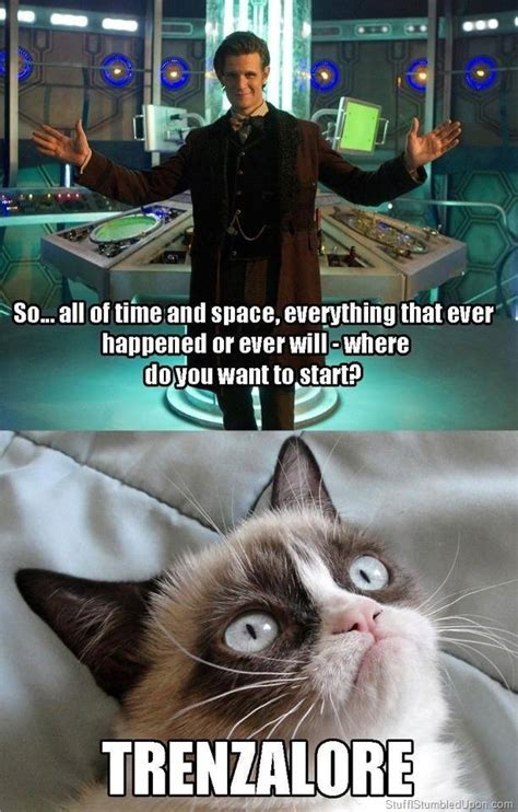 Fuck You Cat Meme - grumpy cat meme doctor who meme trenzalore thumb 1 the