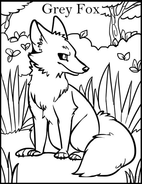 coloring page gray fox coloringpage grey fox by magicbunnyart on deviantart