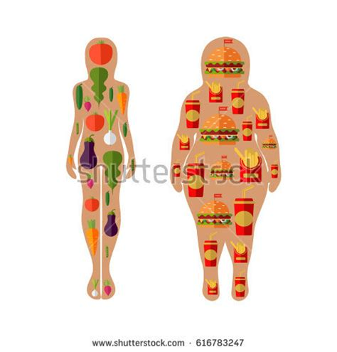 healthy fats clipart vector silhouette fast food vegetables stock vector