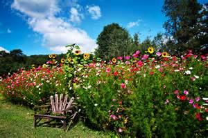 gardening gardening gardening 187 2012 spring photo contest winners
