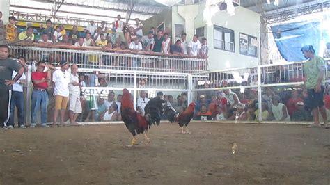 Youtube Sabong Derby 2015 | youtube sabong derby 2015 newhairstylesformen2014 com